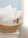 Disposable Pillow (Case of 12)
